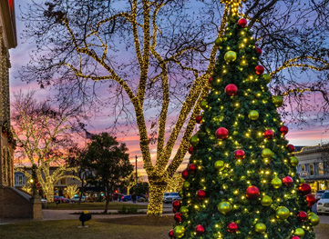 Austin Culture Map: 6 Magical Hill Country Towns with Hallmark-worthy Holiday Light Displays