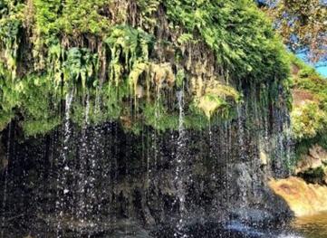 Crockett Gardens Falls